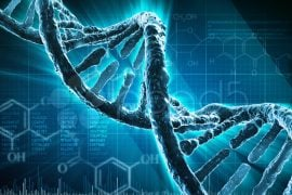 Stocarea datelor în ADN