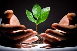 fondurile de investiții