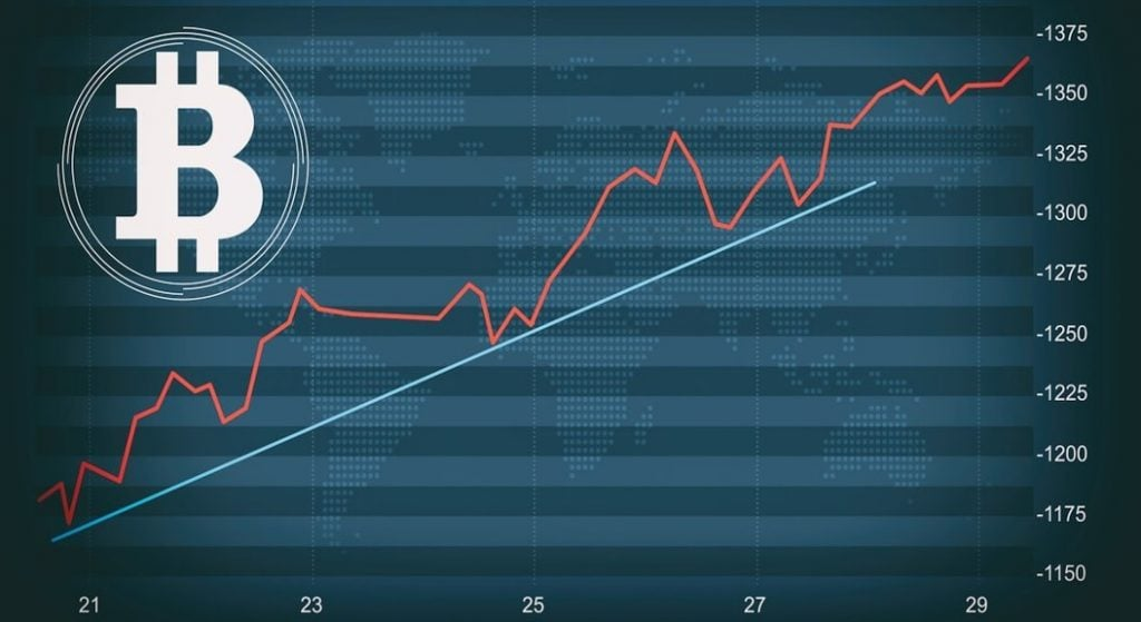 cum de a calcula profitul meu bitcoin)