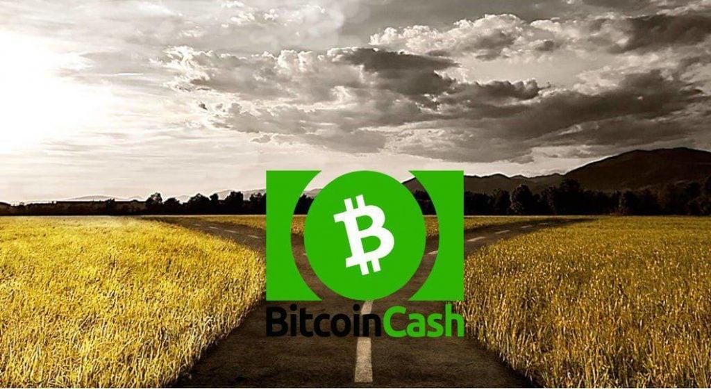hard fork-ul Bitcoin Cash