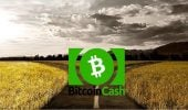 hard fork-ul Bitcoin Cash