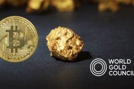 Consiliul Mondial al Aurului