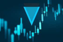 XVG