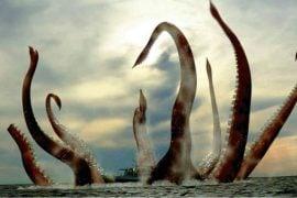 platforma Kraken