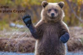 Bitcoin este pe drumul cel bun,
